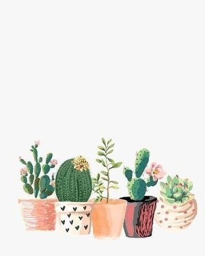 """""""Focusing on the negative only makes a difficult journey more difficult"""" ~ TobyMac#quotesnight #quotestoliveby #clozetteID #lifegoals #cactus🌵"""
