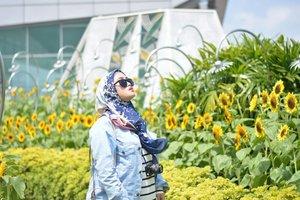 Dalam lakon: haussss.. Panassss.. Butuh oksigen 😅💪🏻🙄 #clozetteid #lifestyleblogger #stylediary #andiyaniachmad #socialmediaqueen #changiairport #sunflower #sunflowergarden #throwbackthursday #hijabi