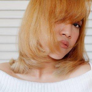 Good morning!My new blogpost is up![Rekomendasi] Produk Untuk Rambut yang Diwarnai..Please kindly to visit my blog👉 www.monicaagustami.com..#biarkeliatanmasihbeautyblogger #bloggerindonesia #blogpost #indonesiabeautyblogger #ibbloggers #ibb #clozettedaily #clozetteid #haircolour #haircaretips #haircare