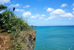 The edge of the cliff while heading to Tegal Wangi beach. Welcomed by this big black birdie.  Pretty chilling moment