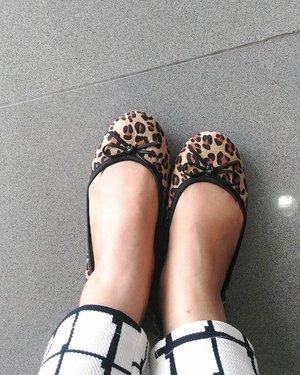 My flat shoes #Cleopard from @butterflytwists_indonesia.. Thank you for the gift 💋, bdw flat shoes ini nyamaaannn bgt, gak sakit sama sekali, dibawa jalan jalan gak sakit.  Dan yang paling penting,  aku jadi semangat jalan,  karena bahannya sesuai dgn ukuran kaki dan empuk.. 👍💐😘. One again thank you @clozetteid and @butterflytwists_indonesia 💋  #ClozetteID #butterflytwists #cleopard #Gift #happysaturday