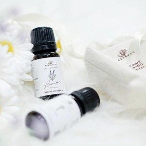 6 Aroma Essential Oil Untuk Tingkatkan Semangat Kerja  Selama Work From Home