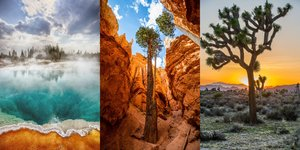 The Best National Parks for Every Kind of Vacation