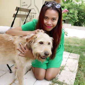 Spotting this dog when I visit Etyek hungary, I forgot her name but she is 10yo lovely dog ❤️ Btw I miss my fury kids so much... #blogger #travelblogger #summer #femaleblogger #fblogger #indonesianblogger #starclozetter #clozetteid #cathrinezieholiday #etyek #hungary #tbt #holiday #indonesianlivinginbangkok