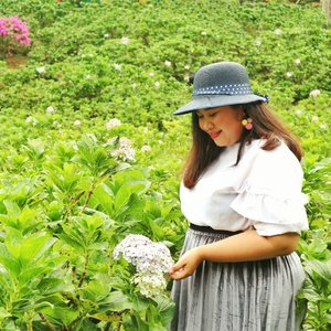 Hydragea and me have so much in common. This flower are actually bunch of tiny little flowers that form a really beautiful and a wholesome flower. Just like me, contains tiny little fat that resulting this absolute unit body. . . . Top: @bodybigsize Skirt: beli di TP Pagi Surabaya, meleknya i-Moda Plus Hat: pinjem punya emak Earrings: @salestockindonesia . #tamanbungaselecta @plussize.sub #ootd #ootdbigsize #ootdbigsizeindo #fashion #cute #ootdplussize #ootdcurvy #ootdplussizeindo #ootdbigsizeindo #curvy #clozetteid #blogger #bblogger #beautyblogger #surabayabeautyblogger #sbybeautyblogger #curvygirl #plussize #bodypositive #celebratemysize #ootdindonesia #ootdindo #curvystyleideasid #influencersurabaya #beautyhasnosize #missbbwindonesia #ootdredhacs #redhacsmixnmatch