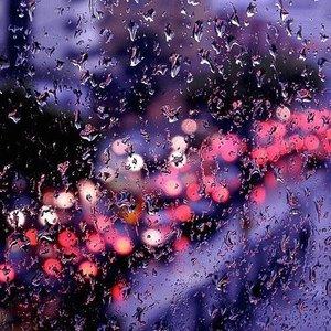 I love the rain I love how it softens the outlines of things The world becomes softly blurred and  I feel like i melt right into it . . . #rain #therain #rainy #rainyday #hujan #travelerblogger #womantraveler #ritystory #ig_asia #travelerlife #mytravelgram #instatravel #igersworldwide #igersindonesia #instaphotoshoot #picsoftheday #travelgram #clozetteid #myadventure  #travelphotography #travelpics #travelasia #indonesiatraveler #womanblogger