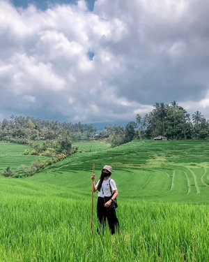 morning trekking with a beautiful green view-📷 @molo.silaban -#idocarebali #WeLoveBali  #wonderfulIndonesia #DiIndonesiaAja #IndonesiaCare #BersamaJagaIndonesia  #ThoughtFulIndonesia #kemenpar #balibangkitchse #pesonaindonesia