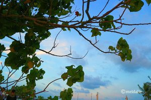 Happy saturday 💘 . . . #beach#sky#canon#canoneosm10#camera#photo#photography#sunset#sea#like4like#photographer#sunsetphotography#clozetteid#quotes#buddhaquotes#motivationquote#inspiringquote