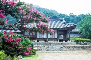 . Myeongjae Historic House yang sudah berusia hampir 300 tahun tapi masih tetap berdiri kokoh dan sangat memiliki pemandangan yang indah #SaveAjaDulu untuk referensi menginap ala Dinasti Joseon :) . Where : 50, Noseongsanseong-gil, Noseong-myeon, Nonsan-si, Chungcheongnam-do . #timetravel #summer #akudankorea #kekoreaaja #ktoid #wowkoreasupporters #summerinkorea #workwithhappy #playwithhappy #neverstopplaying #dearbeautylove #clozetteid #zilingoid #foodies #foodporn #foodphotography #foodgasm #loveyourself #speakyourself #neverafraid #changedestiny #daretobedifferent #ajourneytowonderland #like4like #may #2020