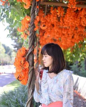 Mencoba untuk bijak dengan memilih ngomong sama kembang daripada sama kamu �����領����儭���綾��� . . . . . #blogger #fashionblogger #bloggerperempuan #bloggerjogja #nikon #nikonindonesia #ootd #ootdmagazine #chictopia #clozette #clozetteid