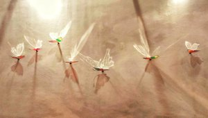 Two wings will make them complete.  #clozetteID #artJakarta2017 #artbazaar #bazaarart #ritzcarlton #pacificplace