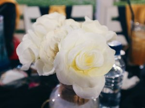 Gala Dinner bareng @beautiesquad kemarin diadakan di @secretgardenjogja 🌵 Mulai dari decor sampai makanannya semuanya unch! Bahkan suasananya pas mantap banget 💃Maacihh Secret Garden for support our #BS1stGathering #BSKEJOGJA ini 😍#BeautiesquadXSecretGarden #ClozetteID #Beautiesquad ❤Thanks to sponsor :@secretgardenjogja @indiecologycafe @edelweiss.party.planner @pondok_sare@ariputra04 @laurent.id @avoskinbeauty @soganbatik @kohveestory @purbasarimakeupid @rubienabeauty @poppydharsonocosmetics @artisanpro @tammia_indonesia @id.biore @kaycollection @vitacremeid @mizzucosmetics @eminacosmeticsjogja @shylas.factory @thebodyheart @thehartzlashes @mybeautydiaryid @mapleyourdayAnd our Media Partner :@femaledailynetwork @bloggerperempuan @womantalk_com @eblushid @dreamcoid @feedme.id @styl_id
