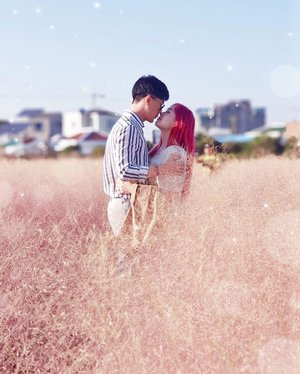"""To. Pink lover💖""""The color pink makes everything look pretty""""Are you fans of pink color? Or you want to capture dreamy feeling of your instagram photo? Here is the perfect place for you but it's not really pink in real so you need some layer of filters 😂Location: pink Muhly, @mrs.bookchon , JeJu IslandPhoto by #selfphotoshoot"""