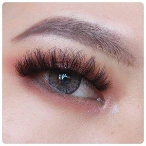 Lemesin tangan 🌵 #Mata (Indonesian) #Eye (English) #눈 (Korean) #眼睛 (Chinese) #ตา (Thai) #œil (French) #oog (Dutch) 🌻 Bukan tau semua, tapi sebagian pake google translate. Kalo salah kasih tau ya 😊 🌺 #JourneyAboutMakeup #liamelqhadotcom #LIAEOTD #Beautiequad #ClozetteID #KBBVmember #KBBVfeatured #bloggerperempuan #sociollabloggernetwork #SBN #KEB #setterspace #makeupenthusiast #makeupjunkie #wakeupandmakeup