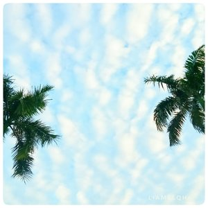 Foto langit pertama yang lumayan sih menurut aku. Kalo bukan diri sendiri yang muji, siapa lagi ya kan? 🙈. BTW, hari ini Jumat, besok Sabtu. Have a nice day ♥.⠀⠀⠀⠀⠀⠀⠀⠀⠀⠀⠀⠀⠀⠀⠀⠀⠀⠀#ClozetteID #Sky #skyphotography