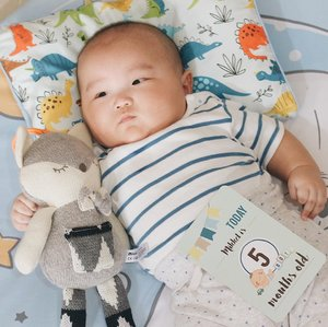 """Mikkel is 5 months old today!Milestones:❤️ Weight - 8,3 kgs❤️ Height - 62cm❤️ Drink milk 120ml every 2 hours❤️ Love to do tummy time and able to lift his head (strong and steady) .❤️ Sit upright for longer periods of time❤️ Sleep through the night❤️ Non-stop babbling❤️ Love to play .❤️ Excited when listen to the music .❤️ Always show """"Freeze-Pose"""" everytime we do proper photoshoot 🤪Mama and Papa just can't wait to watch you grow, my little baby Mikkel (or big baby?)Please stay healthy and happy because we will always love you forever❤️❤️#baby #clozetteid #babyboy #love"""