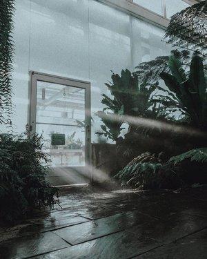 FOUND THIS BEAUTIFUL SHOT ON UNSPLASH BY: BRANDON CORMIER. HOW BEAUTIFUL IS THIS 👌🏻#reposts •Jujur ya cuaca mendung dan hujan bikin aku jadi gampang banget tidur. Ya gak sih? What about you?––Have a nice day everyone 👋🏻 ••••#visualization #menbloggers #unsplashphoto #unsplash #repostthis #reedit #lifestylebloggers #lifestyler #visualblog #visualresearch #moodboards #aestheticallypleasing #aestheticallystunning #asianmenstyle #asianguys #aesthetica #lifestyleguide