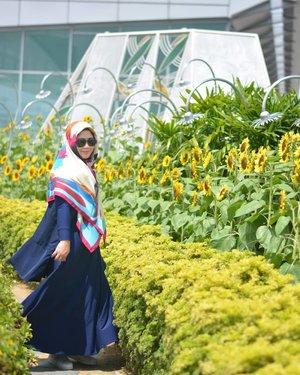 Kapan kita ke mana nih? Ke Sunflower Garden Changi Airport juga aku udah bahagia kok. Uhuk. 🌻🌻🌻🌻..#clozetteid #clozettedaily #starclozetter #hijaboftheday #wiwt #clozettehijab #instahijab #travelinstyle #hijabtraveller #socialmediamom #visitsingapore #sunflower #ootd #hotd #fashion #changiairport #PassionMadePossible #hijabootdindo #diaryhijaber #NikonD5200 #nikonphotography