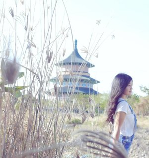 Life is a fairytale. But to see it, you must open your eyes. Fight for yours!#fairytale #weeds #beautiful #nature #naturelovers #surabaya #kenjeranpark #pagoda #pagodatianti #exploresurabaya #ilalang #ootd #jumpsuit #denim #whiteshirt #pictureoftheday #photooftheday #lifestyle #clozetteid #clozetteambassador