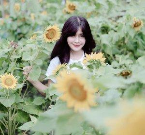 2019, secerah ituuu 🌻 💛 ada aamiin? 😊.Happy New year! 🎊🎉 Bismillah 🙏1st post of 2019..O ya, malam tahun baru semalam, kami sekeluarga dengan santainya tidur. KO abis dari gunung 🤣🤣Merasakan jadi orang normal, di hari yang normal, dengan kondisi normal :).#happynewyear #happynewyear2019 #selamattahunbaru #goodbye2018 #clozetteid #bungamatahari #sunflower#firstpost #yellow #flowers