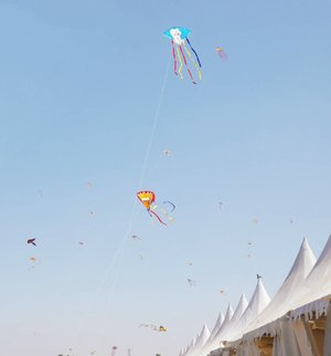 Just flying high~ Surabaya Internasional Kite Festival 2017 #surabayakitefestival2017 #surabayainternationalkitefestival2017 #kitefestival #kite #layanglayang #event #lifestyle #photooftheday #pictureoftheday #surabaya #wonderfulIndonesia #pesonaIndonesia #travel #traveling #traveler #clozetteid