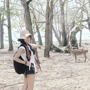 Gisele my belle🎶The double trouble.💪Traveling itu semacam terapi buat saya. Masih ingat dulu meninggalkan pekerjaan di Jakarta, lalu traveling untuk sembuhkan sakit, dan keterusan sampai sekarang, hingga jadi hobi, passion, dan mata pencaharian baru.So, the #wonderfulbenefitsoftraveling this time is about...that you can enjoy life like never before!At least once in your life, you should leave everything on pause and go somewhere, anywhere. Traveling should be your answer. In every corner of the world, there is excitement waiting for you. It is simply a matter of sticking your head out and going for it.💪About the place: This is the end of Komodo's tracking! 💪😍Komodo National Park is located in the center of the Indonesian archipelago, between the islands of Sumbawa and Flores. #deer #komodo #island #Indonesia #komodonationalpark #Park #tracking #heritage #wonderfulIndonesia #pesonaIndonesia #traveling #travel #traveler #summer #nature #naturelovers #lifestyle #outdoor #2Mirhamfaridhcom #akangbolangXavillabali @irhamfaridh @avillabali #ootd #sotd #shortjeans #hat #tshirt #travelinstyle #clozetteambassador #clozetteID