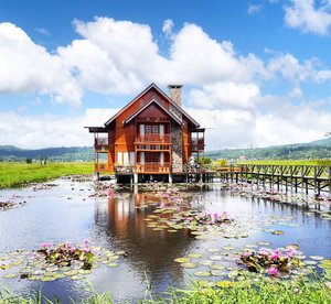 Be like lotus. Blooms in the most rare and beautiful of all.😊 #home #house #beautiful #wood #Manado #Indonesia #wonderfulIndonesia #pesonaIndonesia #tondano #lake #skyporn #grass #lotus #flower #travel #traveller #traveling #designinterior #architecture #cloud #traveling #instagood #photography #photooftheday #photooftheday #pictureoftheday #nature #naturelovers #clozetteid