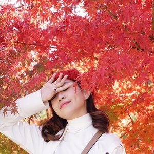❤️🍂⛩ Time to head home! Thanks for the memories 🇯🇵🚇 will definitely go back soon! #throwback to a blissful view of the autumn leaves 😍 so excited for December, its about time for Christmas 🎄!! The joyous time of the year. . . . . . . . . . . #autumn #tokyo #japan #holiday #smile #exploretocreate #clozetteid #discovertokyo