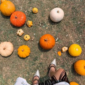 Yellow and Orange always manage to make me smile 😃 Have a good day love !! .....#pumpkin #shotoniphone #flatlay #shoefie #clozetteid #style