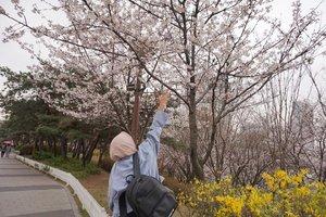 🌸🌈 Welcome spring 📸 @eliansy  #necgoestokorea #clozetteid