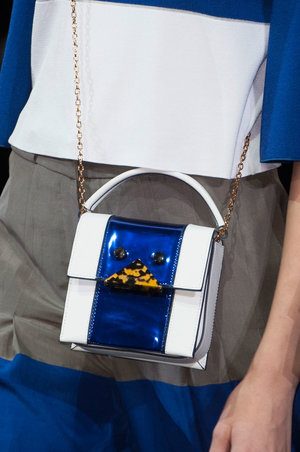 Mini bags are having a huge moment right now. This option from Emporio Armani is pretty darn perfect.   Read more: http://stylecaster.com/best-bags-spring-2015/#ixzz3TZwkdNy3