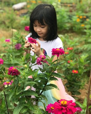 While you are away abah @firsan_nova ⁣I pick flowers for you 🌺🌸🌼⁣⁣#raneiratsuraya #myfirstborn #kesayangan #loveofmylife #firstborn #bigsister #instakids #fashionkids #kidsworld #siblinglove #clozetteid #firstlove #kidsrule
