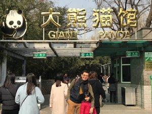 Ke Beijing kali ini harus negosiasi utk ngga ke tempat2 yg membosankan buat anak-anak, pengennya hr ini ke Forbidden City & Tiannanmen Square (lagi) tapi akhirnya ngalah ubah haluan ke Beijing zoo karena ada yg pengen liat panda. 🐼♥️🐼 Nyoba naik subway ke sini dr hotel ternyata gampang bgt & ada khusus stasiun Beijing zoo 🚇  Seneng jg ke sini, karena dulu ngga sempet. Selain itu kita jg sempet ke Beijing Aquarium yg ada dalam Beijing zoo 🐬🐳🐋🦈  Doakan semoga ngga males update di blog utk cerita pengalaman di kedua tempat di Beijing ini  yak 😅  #Beijingzoo #whileinBeijing #panda #giantpanda #familytrip #travelwithkids #citizenoftheworld #instatravel #instaplace #instavenue #instabeijing #familylife #traveling #travelbeijing #beijingwithkids #clozetteid #beijingpandazoo #kidstraveller #familytravels