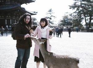 Feeding bambi 💕#HuboyWaifuTravelJournal #HuboyWaifuJalanJalanJapan#NaraPark #Japan #ClozetteID
