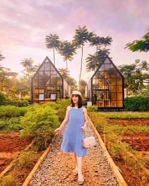 Changing my mind from posting endorsement photo into this picture. Taken by @samsung_id when the air has not been polluted with COVID-19. The sky was painted. Tap my story for the original photo. . #sisytravelingdiary . . . . . . . . #ootd #photooftheday #beautifuldestinations #kodakfilter #gardensbythebay #iphoneonly #travelinladies #tutorialedit #photoedit #like4like  #untiltomorrow #kodak  #clozetteid #floralfantasy #arumdalu #travelsingapore #thewanderingtourist #travel #arumdalufarm #sunflower #kodak #tapfordetails