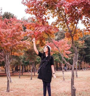 Time to share my photo at Nami Island ❤ Spent almost 3.5 hours there to take pictures and enjoy the view. A must visit place when autumn in Korea. . . . . . . . . . . . . . #ootd #photooftheday #beautifuldestinations #bali #seoul #france #paris #ootdspot #jktspot #like4like #nstagramable #maple #switzerland  #postthepeople #travel  #clozetteid  #autumn #namiisland #mountsorak #makeup #selfie #japanese #travel #endorse #korea