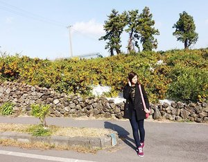 Anyeong🙆� Tuesday morning from Jeju 😆 Second times goes here~ ☺� Let's begin the journey👀 • • • • • • #photooftheday #photograph #life #tagsforlikes #like4like #webstyle #webstagram #igers #instagood #instalike #instamood #instadaily #meinframe #mystyleinframe #bestoftheday #clozetteID #COTD #enjoy #explorekorea #happy #holiday #havingfun #jeju #korea #
