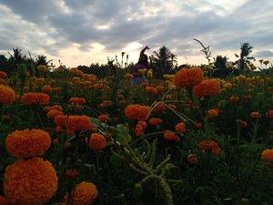Still feel lil bit broken hearted, but time heals me.But for me it takes 11 years. 🤣#vinapiknik...#sunset #sunsetinbali #bali #klungkung #eastbali #gemitir #gumitir #clozetteid #backlight #happy