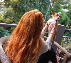 Hello Nü Hair 🙋 . #dewihairdiary #dewiyang #sunset #orangehair #bblogger #beautyblogger #clozetteid #love #instagood #photooftheday #tbt #beautiful #cute #happy #fashion #me #followme #follow #selfie #picoftheday #summer #like4like #friends #instadaily #girl #fun #tagsforlikes