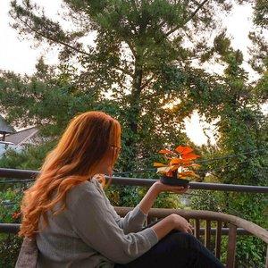 What we think, we become 🌅 . #dewihairdiary #dewiyang #orangehair #hair #sunset #potd #clozetteid #love #instagood #photooftheday #tbt #beautiful #cute #happy #fashion #me #followme #follow #selfie #picoftheday #summer #like4like #friends #instadaily #girl #fun #tagsforlikes