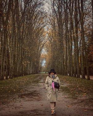 Autumn in Paris . Warna tanah, kuning, orange, merah dan hijau menghiasi pemandangan di sepanjang jalan. Sayangnya ditambah dengan hujan dan suhu yang makin  lama makin drop . #clozetteid #travelling #travelaroundtheworld #autumninparis