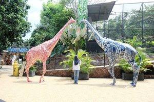 One fine day at the zoo 🐴🐴...#batusecretzoo #clozetteid #malang #exploremalang #nianastitimalang #explorebatu