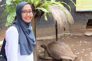 Learn from the turtle: at ease in your own shell 😊...#batusecretzoo #kurakuraraksasa #clozetteid #giantturtle
