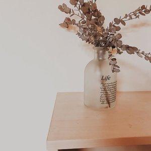 May life will be always treat us well.........#clozetteid #listenindadailyjournal#travelphotography #nature #aesthetic #photography #bloggerperempuan #flowers #flowerstagram #flowerphotography #flowerpower #thoughts #qotd #shortstories #quotes #moonphases #quotestoliveby #poetic #lifestyleblogger #blogger #eucalyptus