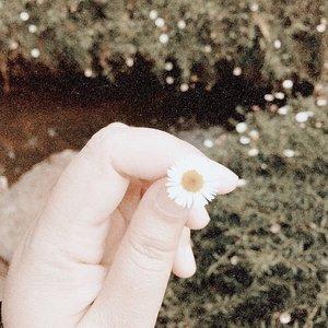 Secara berkala ngebenerin feeds bukan atas nama branding sih, cuma karena demi kepuasan personal pandangan mata saya aja..Biar ngga butek ngelihat gallery sendiri ☺️........#clozetteid #listenindadailyjournal#travelphotography #nature #aesthetic #photography #bloggerperempuan #flowers #flowerstagram #flowerphotography #flowerpower #thoughts #qotd #shortstories #quotes #quotestoliveby #poetic #lifestyleblogger #blogger