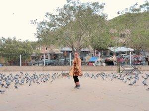Jaipur 🇮🇳 . . . . . . . . . . . . . . . . . . . . #clozetteid #khansamanda #khansamandatraveldiary #jaipur #rajasthan #india #amerfort #amer #travel #wheninindia #travelgram #indian #fort #travelphotography #wonderful #beautifuldestinations