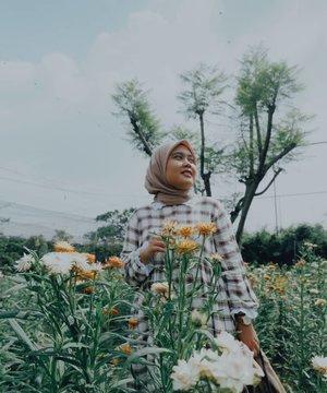 Ya kalo nyari yang sempurna si susah ya, tapi kalo ada yang lebih baik. Kenapa engga 🌼🌻  - #tezzaapp #clozetteid #berkebun #sunflower #haideeorlinootd #hlladies #umrohwithhl #hlvoal #travelling #lb #evidibandung #garden