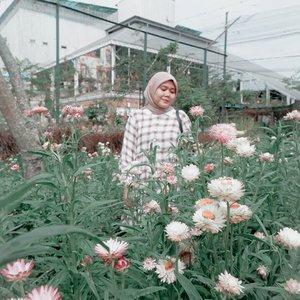 Jangan lupa kebunnya di tengokin dulu 🌼🌻🌺Emang si kebun tetangga lebih bagus, tapi kalo bisa ngerawat kebun sendiri ngapain juga mikirin kebun tetangga 😜Have a nice day 🌼-#clozetteid #clozette #throwback #moment #bandung #evidibandung #garden #view #flowers #haideeorlin
