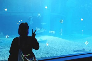 I have extraordinary love for aquarium � I love sea creatures but too scared to be near them so yeah, aquarium it is 😛 Anyway, you can read my blogpost about Osaka Aquarium Kaiyukan on #bigdreamerblog #BigDreamerInJapan �...#clozetteid #travelblogger #fashionblogger #lifestyleblogger #osakaaquariumkaiyukan #osaka #japan #japanloverme #ggrep #exploringtheglobe #theglobewanderer #wanderlust #aquarium #여행 #여행그램 #여행스타그램 #파워블로거 #旅行 #旅日記 #大�
