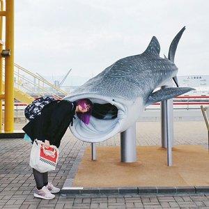 Back to routine slash editor life got me like....💥...#clozetteid #japan #osaka #osakaaquarium #osakaaquariumkaiyukan #ggrep #japanloverme #japantravel #exploreosaka #BigDreamerInJapan #旅行ブロガー #旅行 #大阪 #여행 #여행스타그램